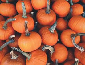 Celebrate Halloween with us: Italian treats for all tastes!