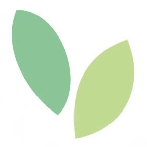 Twist shape taralli with fennel seeds - box